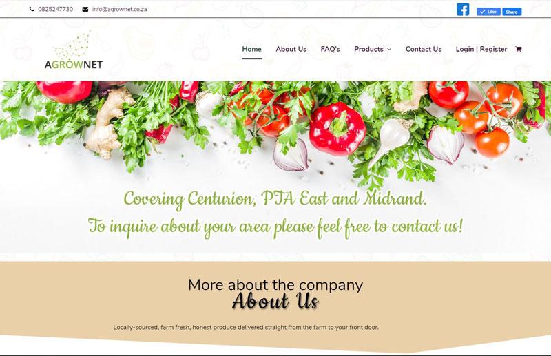 wordpress website development